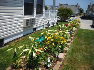 Rita & Bob Chapman's Flower Garden