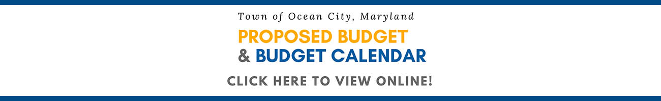 View the Proposed Budget and Calendar